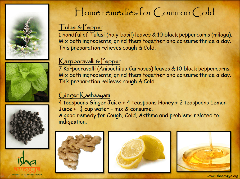 Home Remedies For The Common Cold The Isha Blog