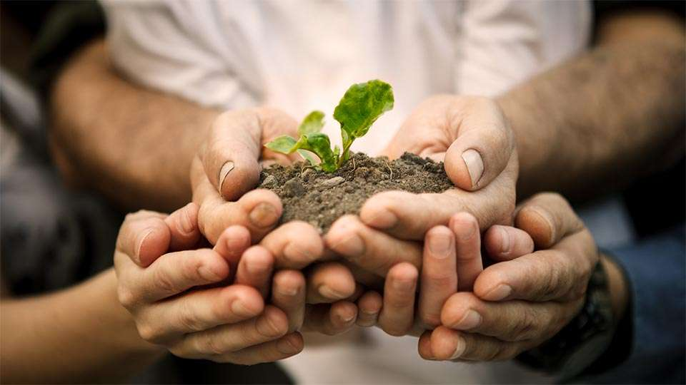 role of individual in conservation of natural resources and environment Role of individual in preserving natural resources 2 natural resource:natural resources are materials and components (something that can beused) that can be found within the environment.