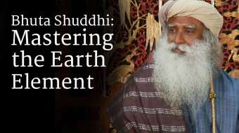 Bhuta Shuddhi Mastering the Earth Element