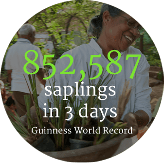 circlesF_0000_852,587-saplings--in-3-days--Guinness-World-Record